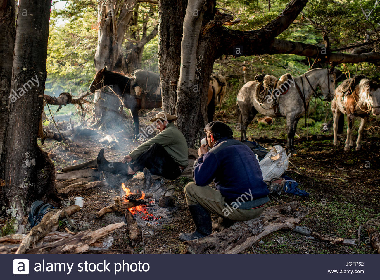 Bagualeros, cowboys who capture feral livestock, eat breakfast and load horses on a trip. Stock Photo