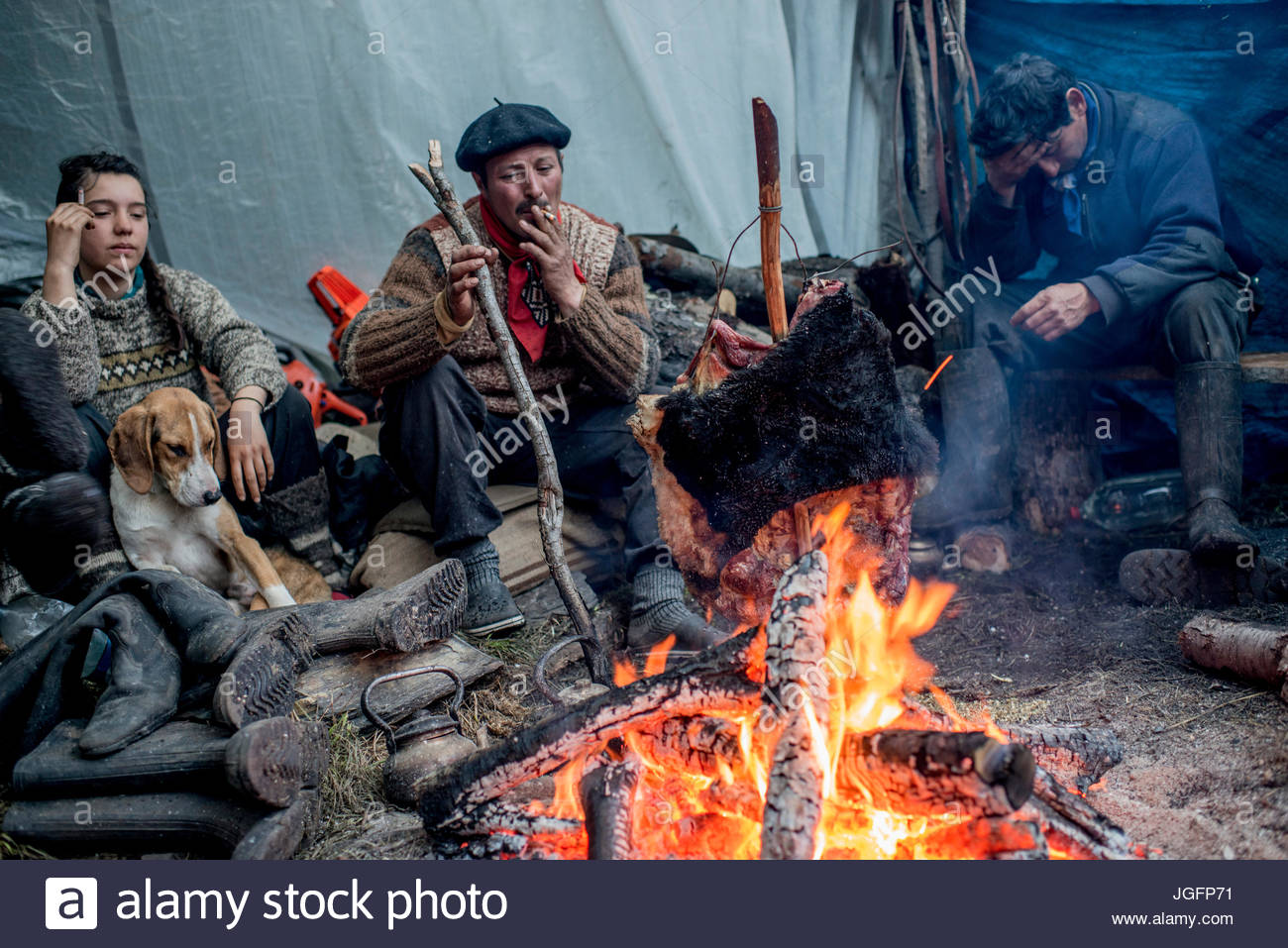 Bagualeros, or cowboys who capture feral livestock, cook meat on a stick from a feral bull. - Stock Image