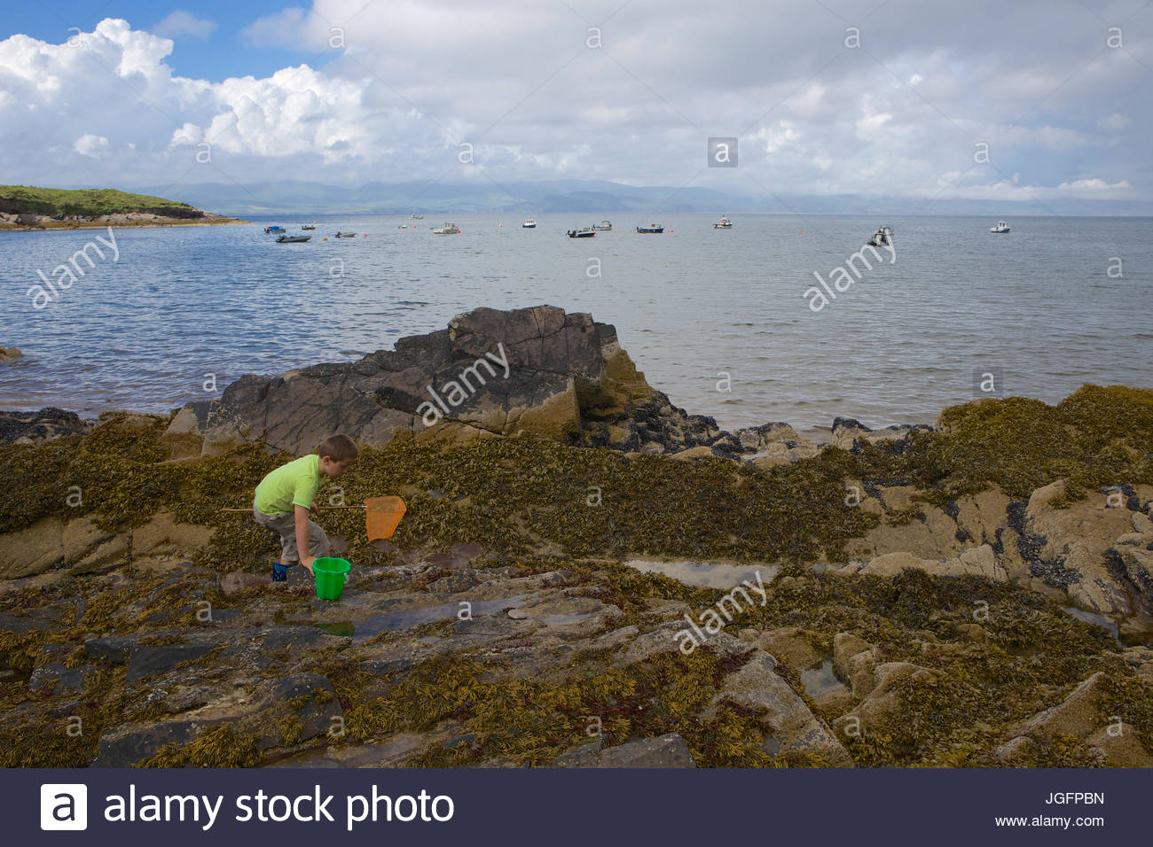 A young boy searches rock pools along the 111 mile Ring of Kerry, Ireland's ultimate scenic drive. - Stock Image