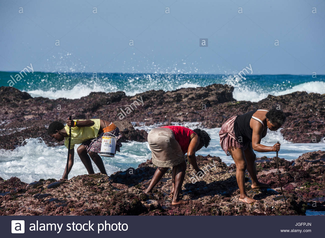Subsistence fisherwomen harvest rocky shore organisms such as limpets and mussels from just outside the borders - Stock Image