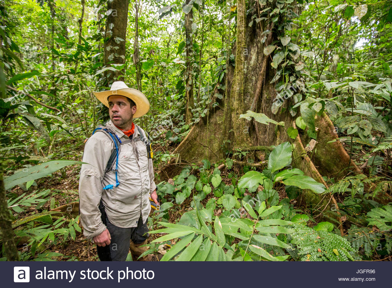 An archeologist explores the Mosquitia jungle in search of evidence of an ancient civilization. - Stock Image