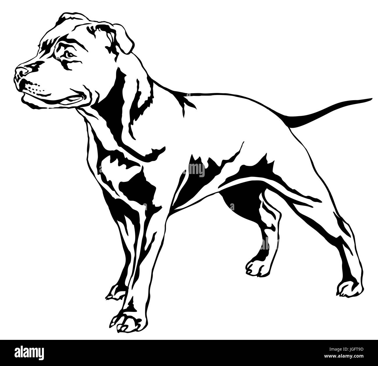 Decorative portrait of standing in profile dog Staffordshire Bull Terrier, vector isolated illustration in black - Stock Image