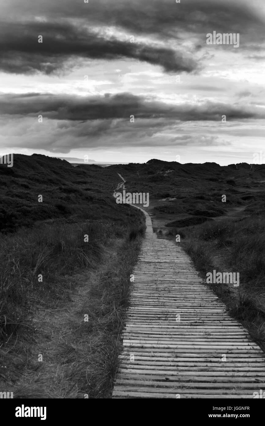 boardwalk through braunton burrows sand dunes Stock Photo