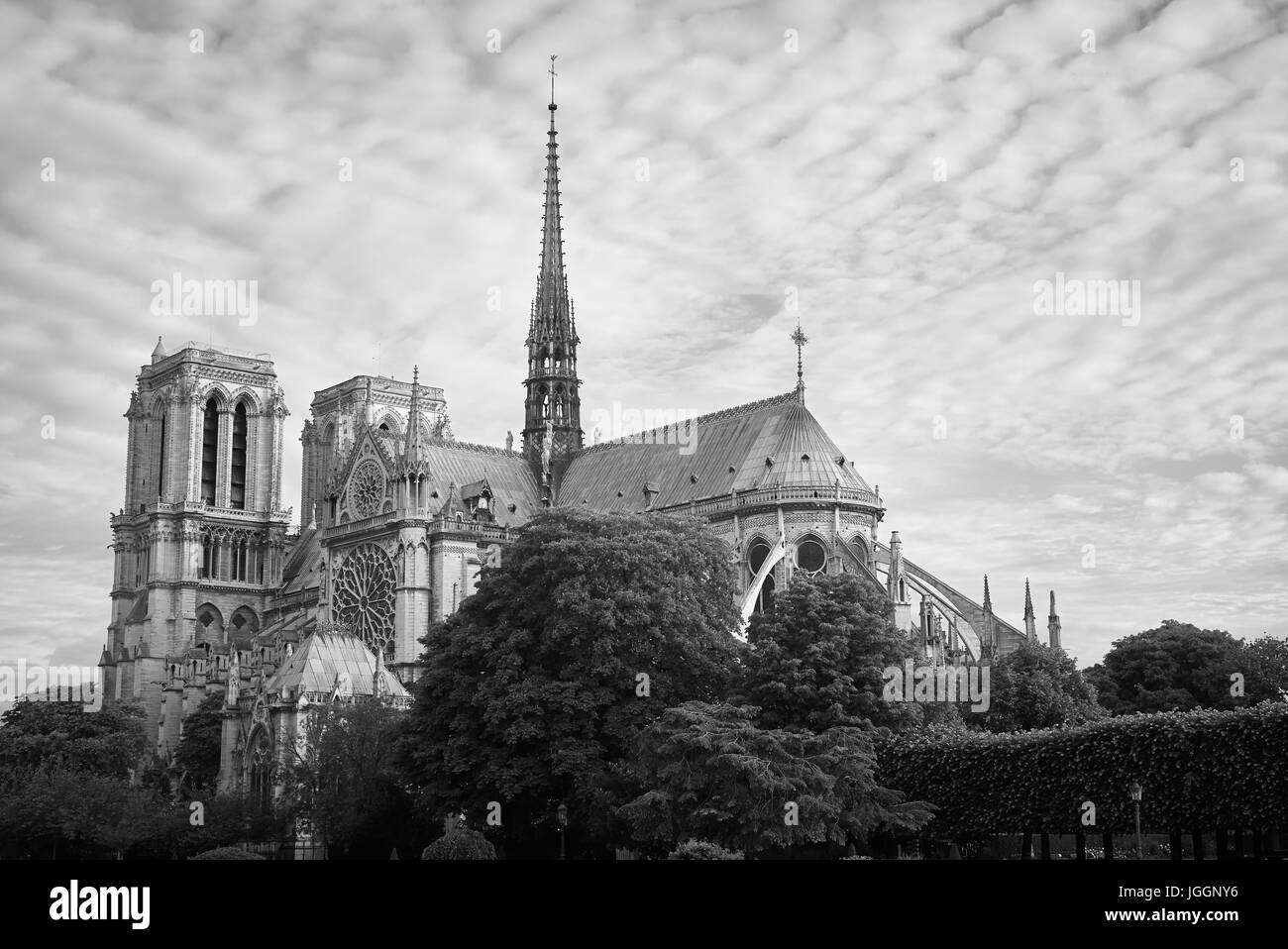 The Cathedral of Notre Dame, Paris, France - Stock Image