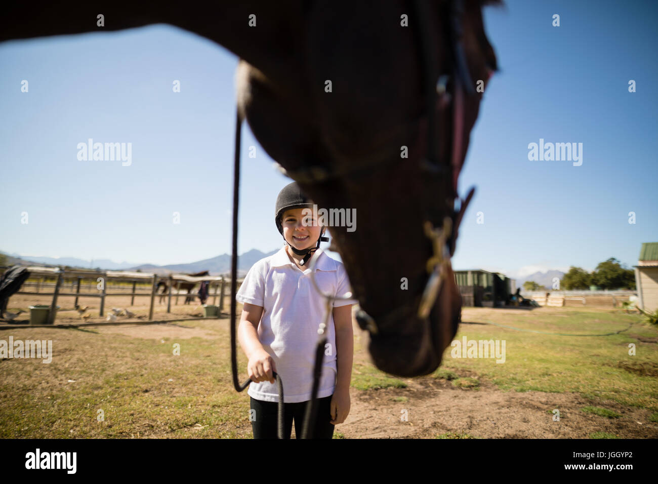 Smiling girl holding the rein of the horse in the ranch on a sunny day - Stock Image