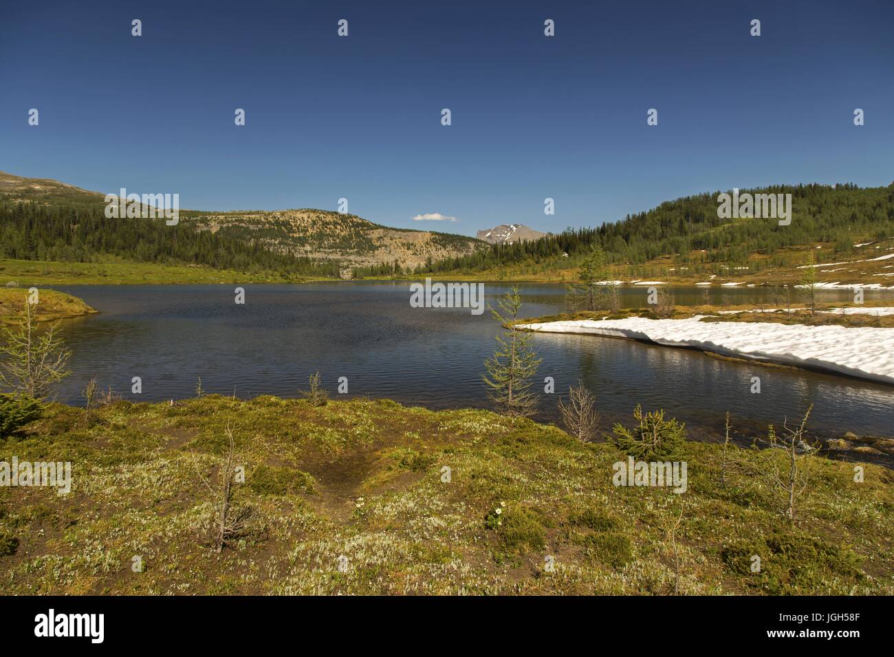 Scenic view of Eohippus lake below Monarch Mountain on Great Hiking Trail in Banff National Park, Canadian Rocky Stock Photo