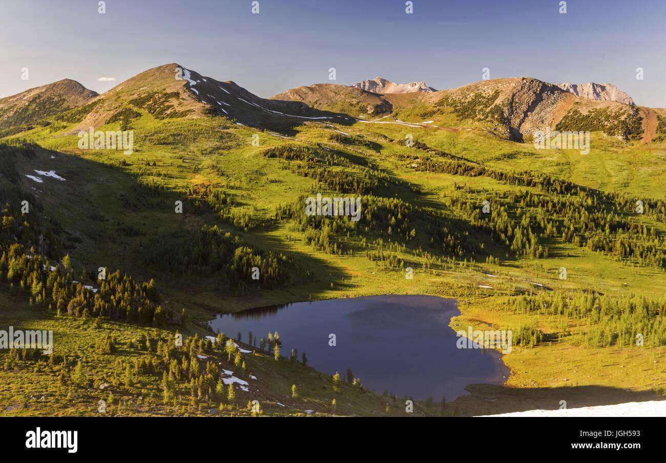 Scenic View Of Healy Pmeadows Alpine Environment Below Monarch Mountain On Great Hiking Trail In Banff National Park Canadian Rocky Mountains