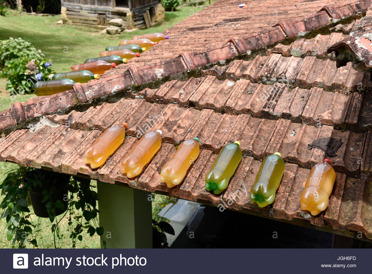 Pet bottles with honey on top of roof in a house in the neighborhood Fragária in Serra da Mantiqueira, Itamonte, - Stock Image