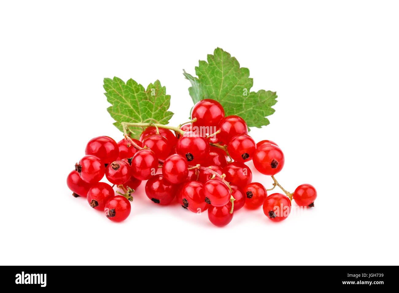 Ripe delicious red currant white background. - Stock Image