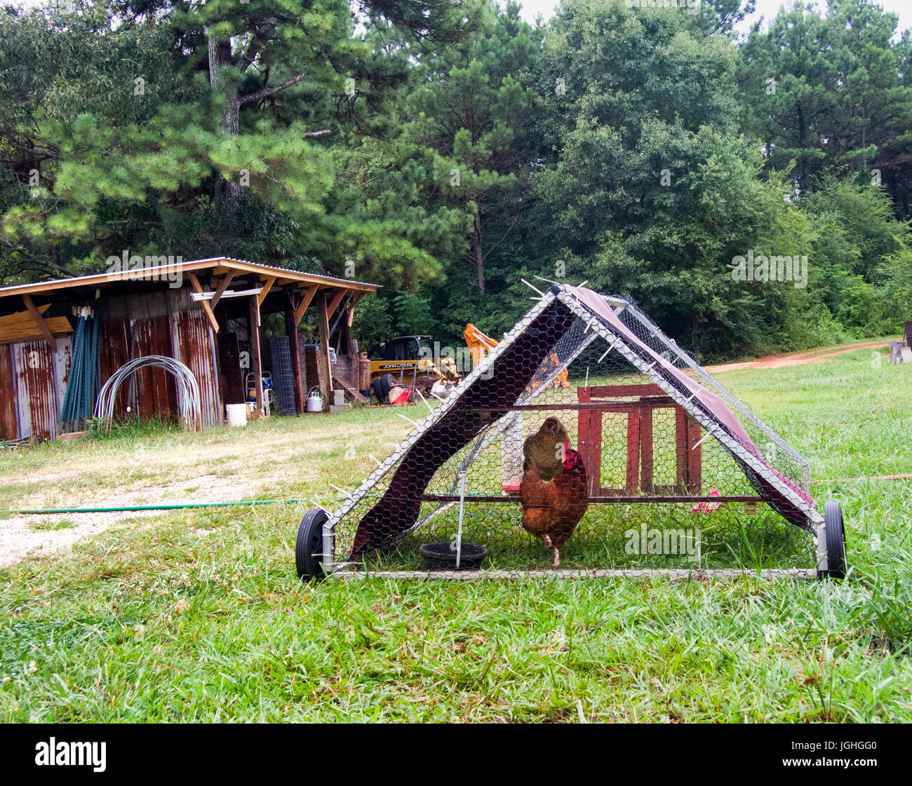 Rotation Grazing hen house on wheels, hen - Stock Image