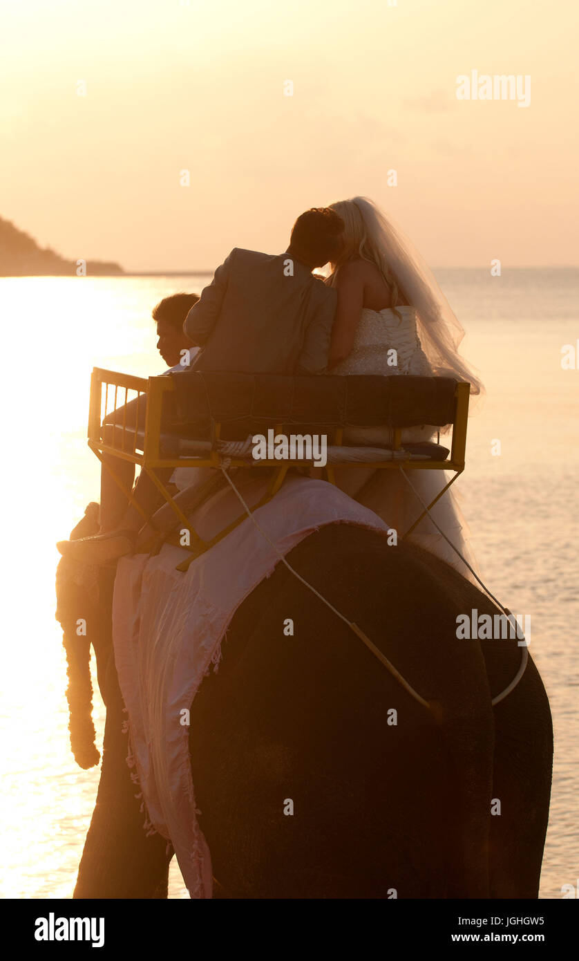 Koh Samui, wedding for foreigners, go at sea with elephant, Thailand, 2014 - Stock Image