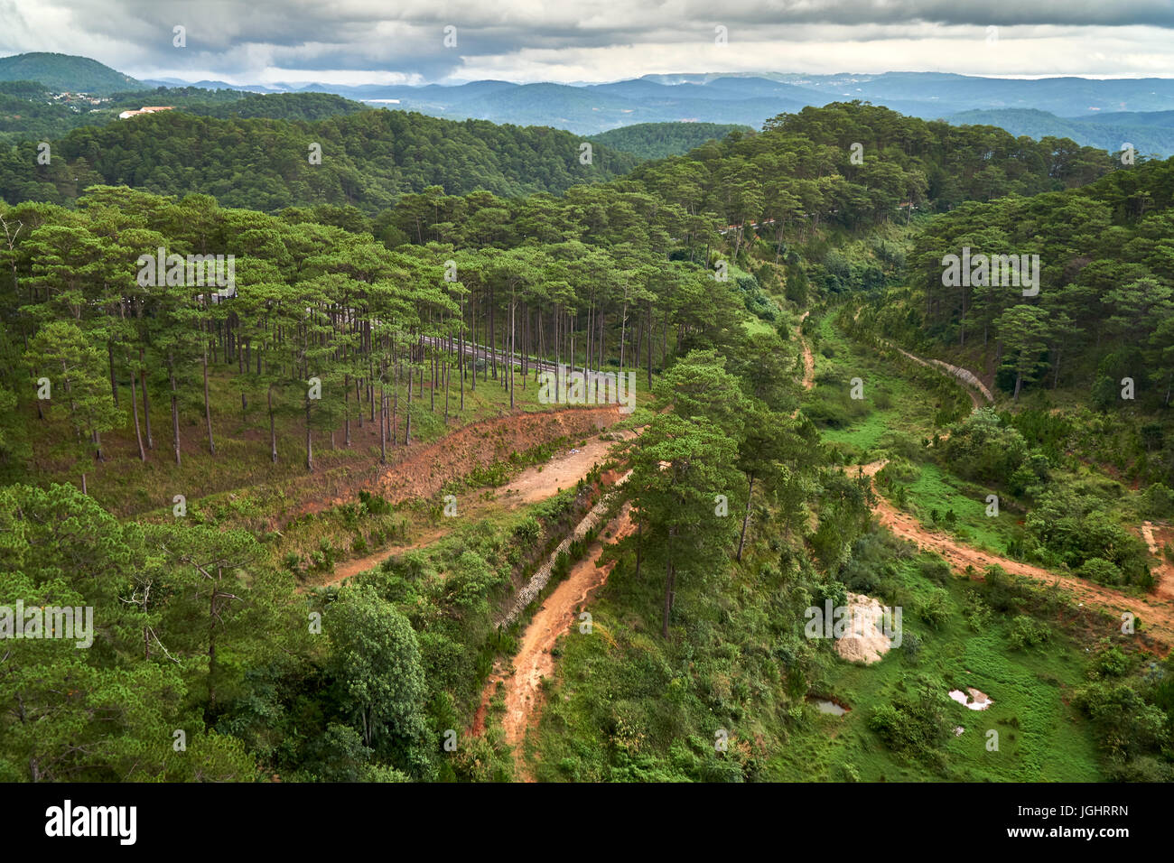 Pine forest - high angle view - from the Dalat Cable Car to the Truc Lam pagoda. Dalat, Vietnam. - Stock Image