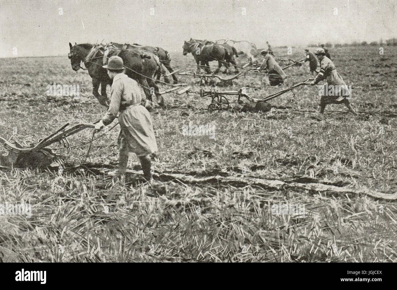 Women ploughing in Surrey, World war 1 - Stock Image