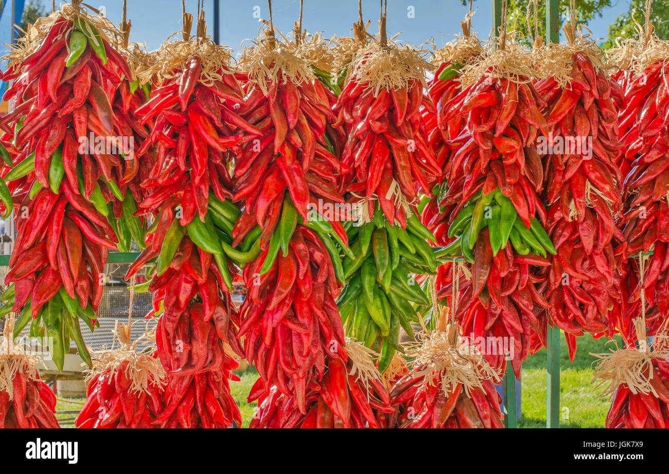 Fresh New Mexico red and green chile pepper ristras, - Stock Image