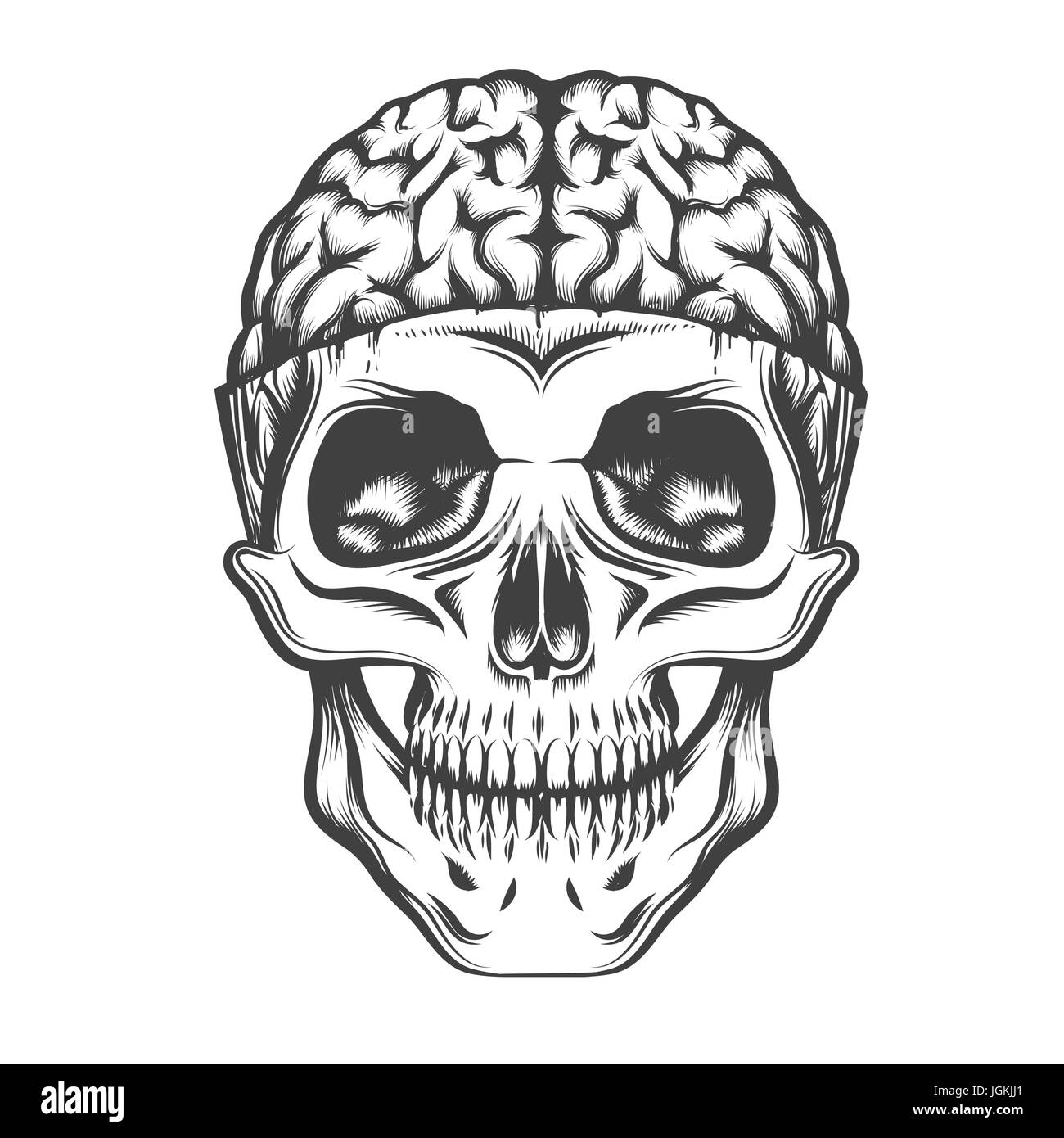 c4fd8d087429f Human Skull with open brain. Vector illustration in tattoo style. - Stock  Image