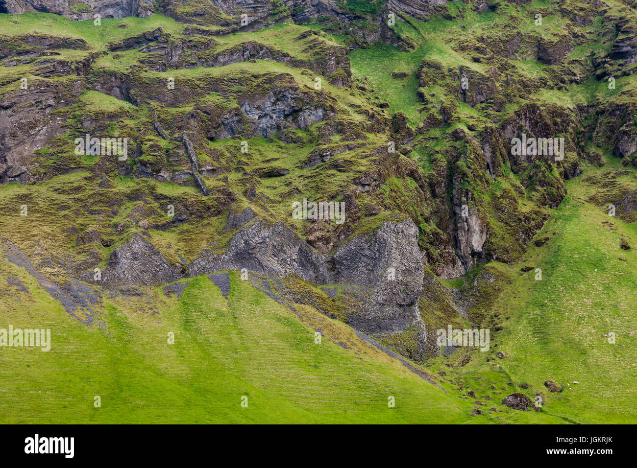 Abstract textural image of Basalt cliffs and the transition to sheep grazing meadows in Iceland - Stock Image