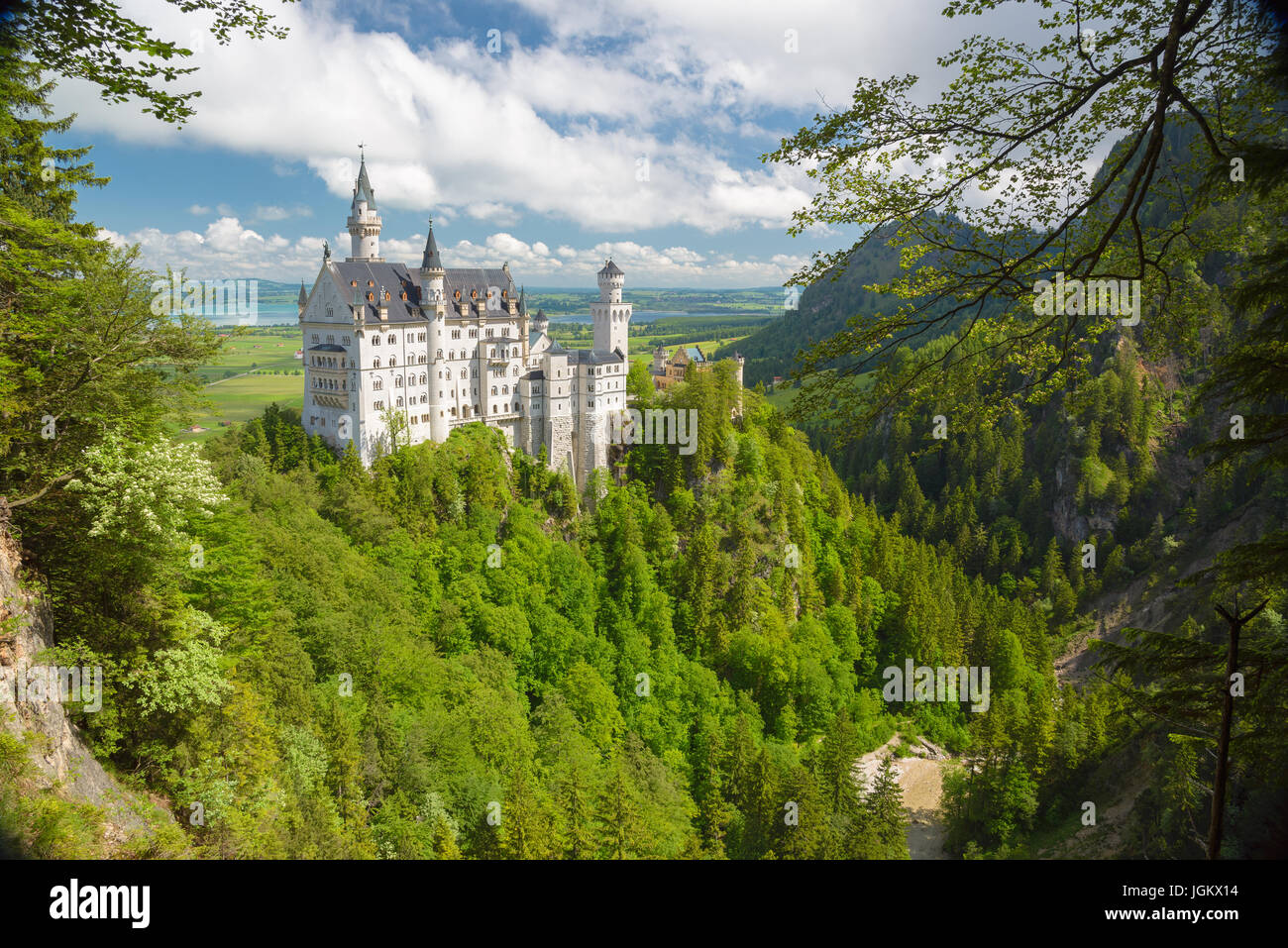 Picturesque nature landscape with Neuschwanstein Castle. Germany. - Stock Image