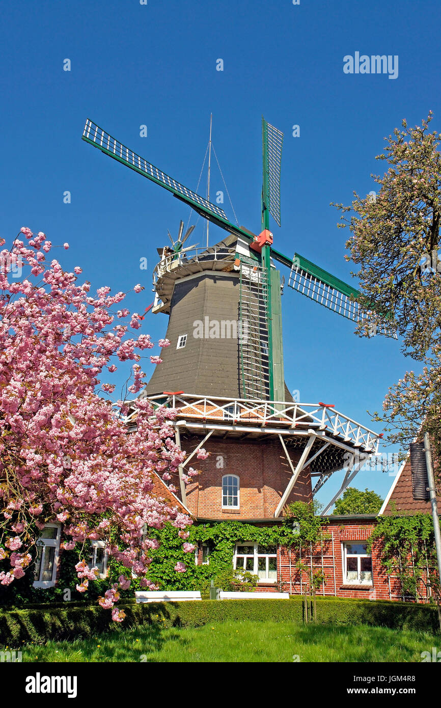 Europe, Germany, Lower Saxony, Friesland, East Friesland, Esens, scenery, building, architecture, place of interest, Stock Photo