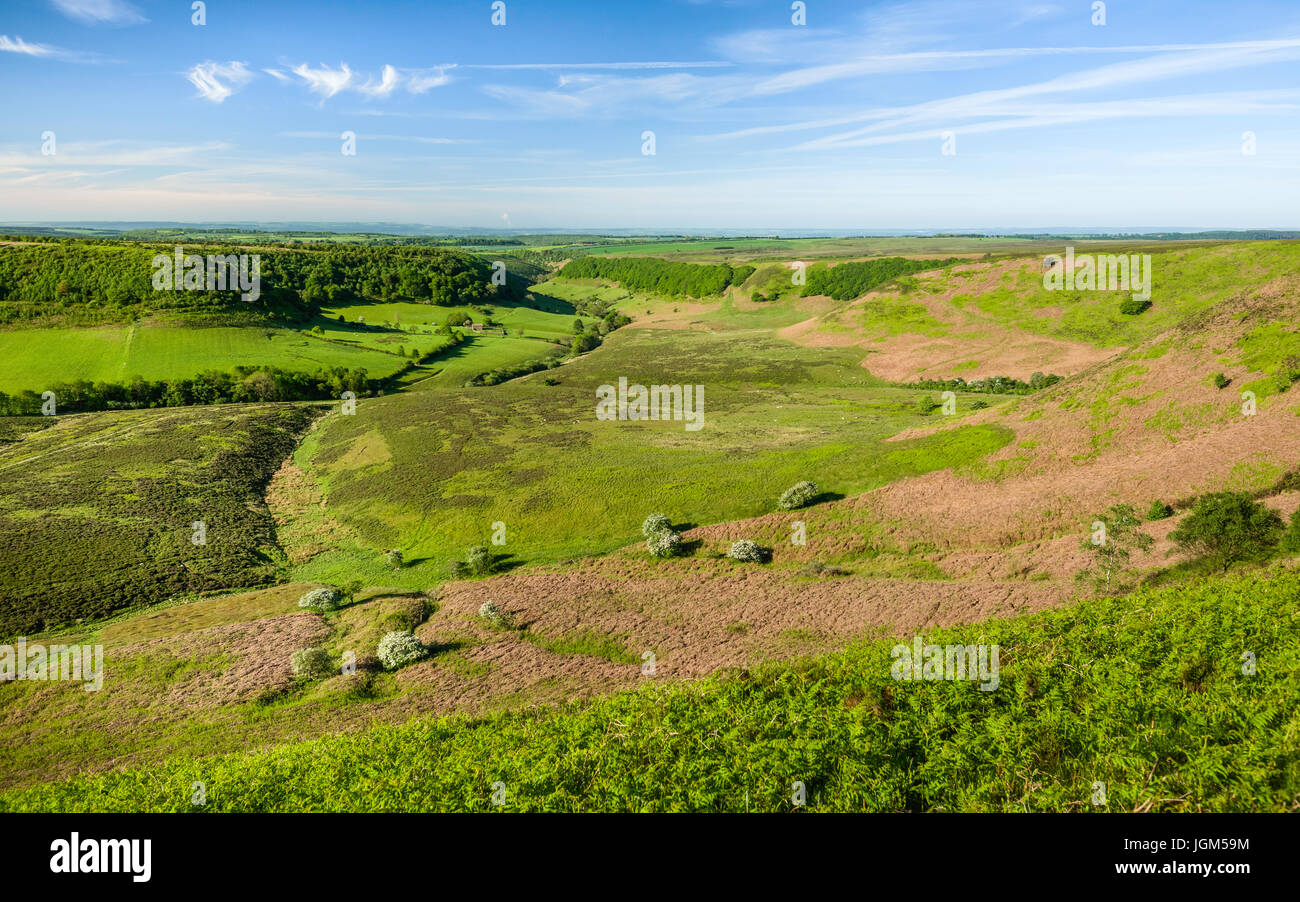 Geological depression in the North York Moors with view of farmland, moorland, and vegetation on a fine spring morning Stock Photo