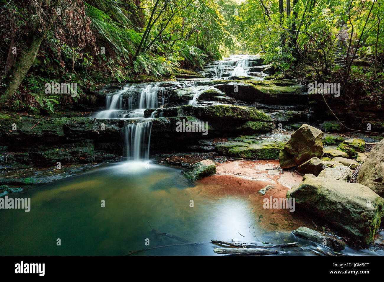 The Leura Cascades in Sydney's Blue Mountains - a great escape from the city with some great bushwalks. - Stock Image