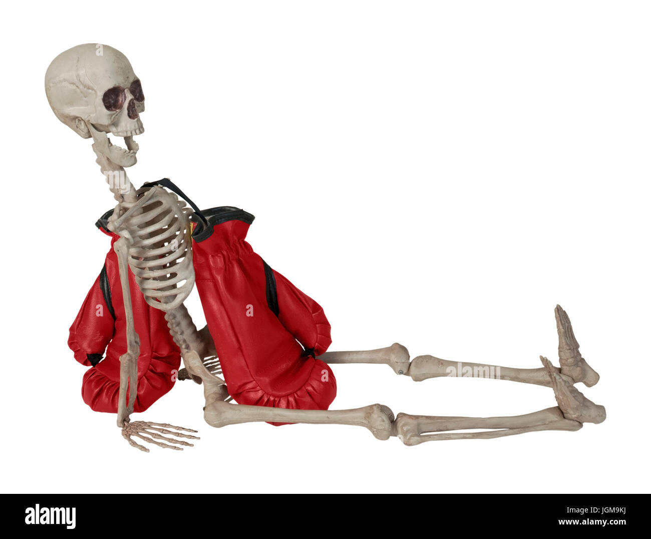 Skeleton with Red Boxing Gloves - path included - Stock Image