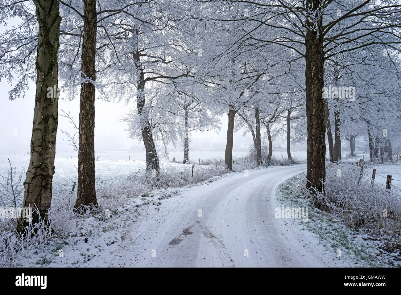 The Federal Republic of Germany, Lower Saxony, East Friesland, snow, ice, winter, freezes over, street, way, country - Stock Image