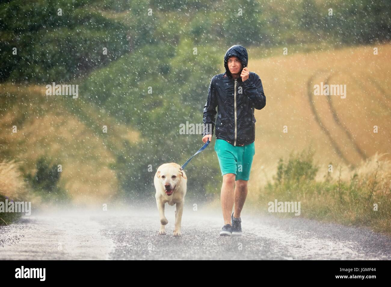 Young man walking with his dog (labrador retriever) in heavy rain on the rural road. - Stock Image