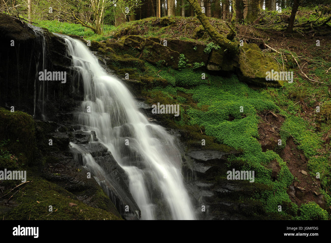 Small Waterfall on the Nant Bwrefwr, Brecon Beacons. - Stock Image