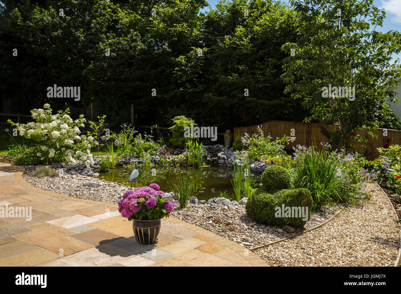 Garden patio at the edge of a pond with plant pots, topiary,hydrangeas,white moth hydrangea paniculata , - Stock Image
