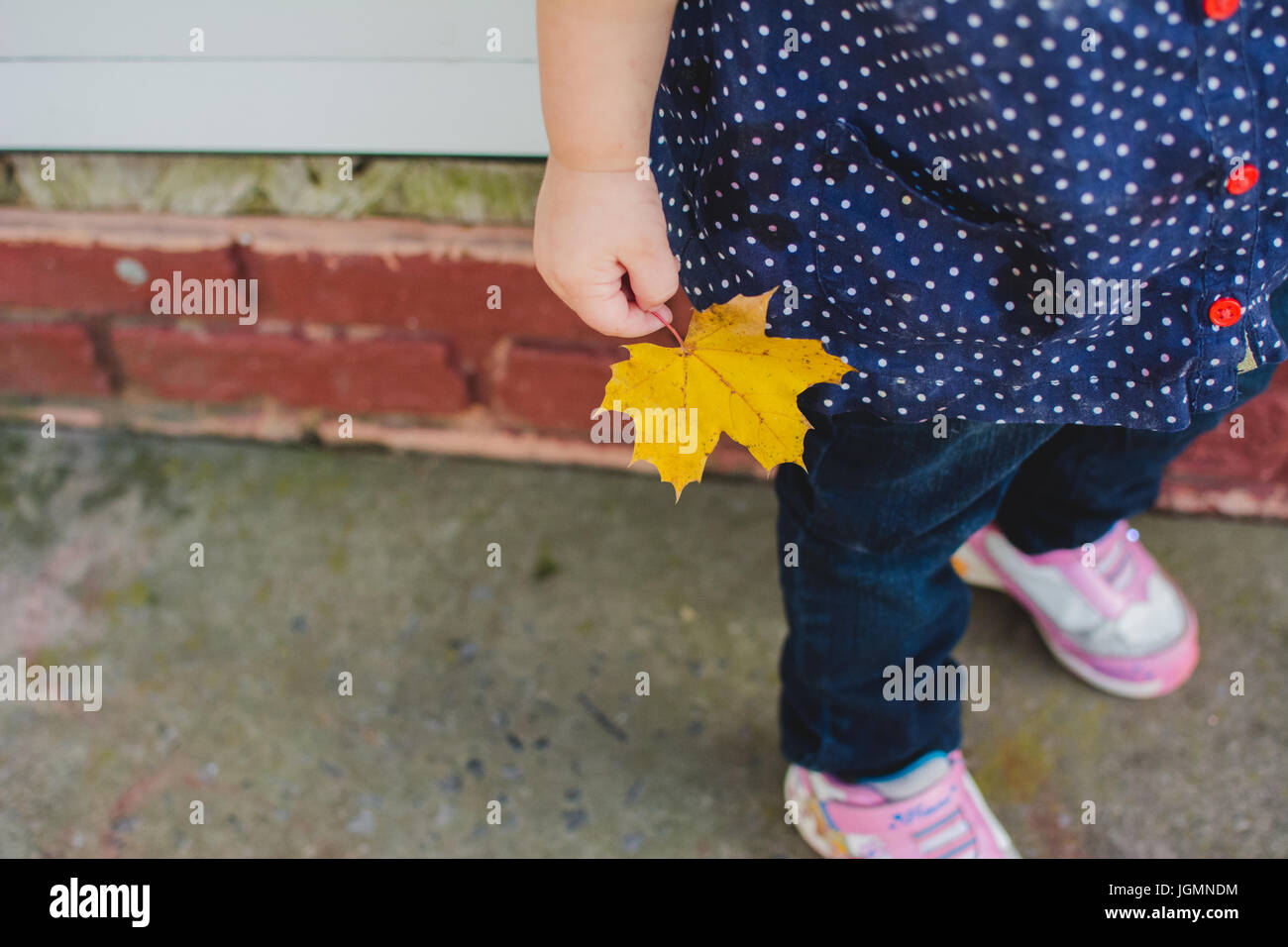 A young child hold a yellow leaf in autumn. Stock Photo