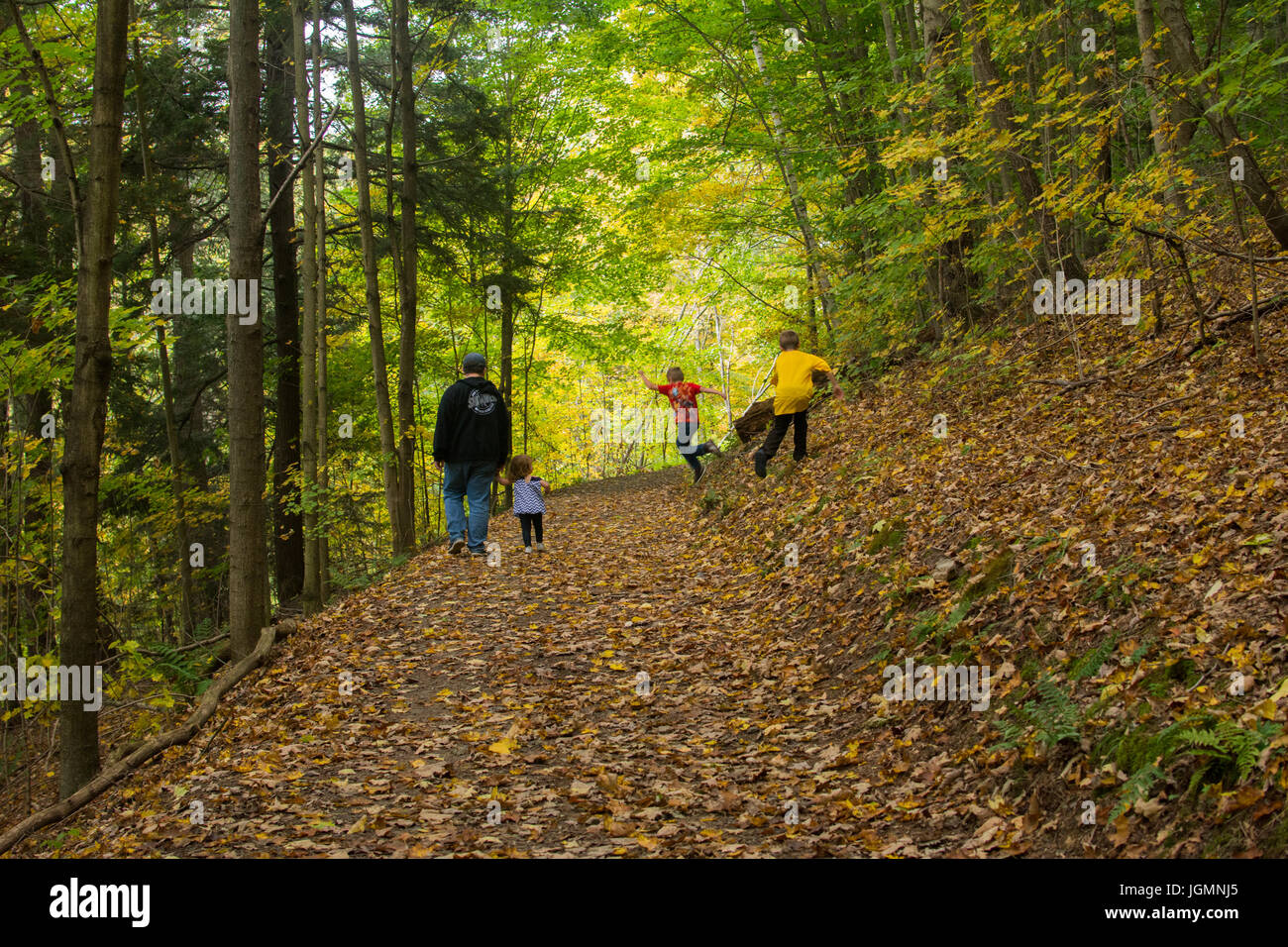 A man and three children playing and walking on a leaf covered path in the woods. - Stock Image