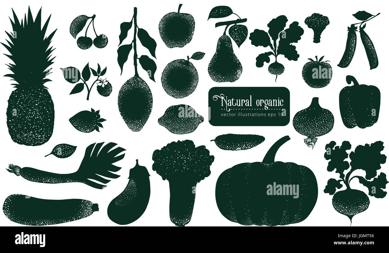 Vector fruita and vegetables silhouettes. Retro illustrations. Hand drawn nature objects. - Stock Vector