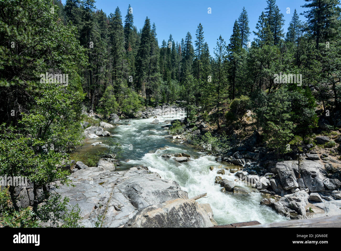 North Fork of the Stanislaus River passing through Calaveras Big Trees State Park, California, USA, on a clear sky - Stock Image