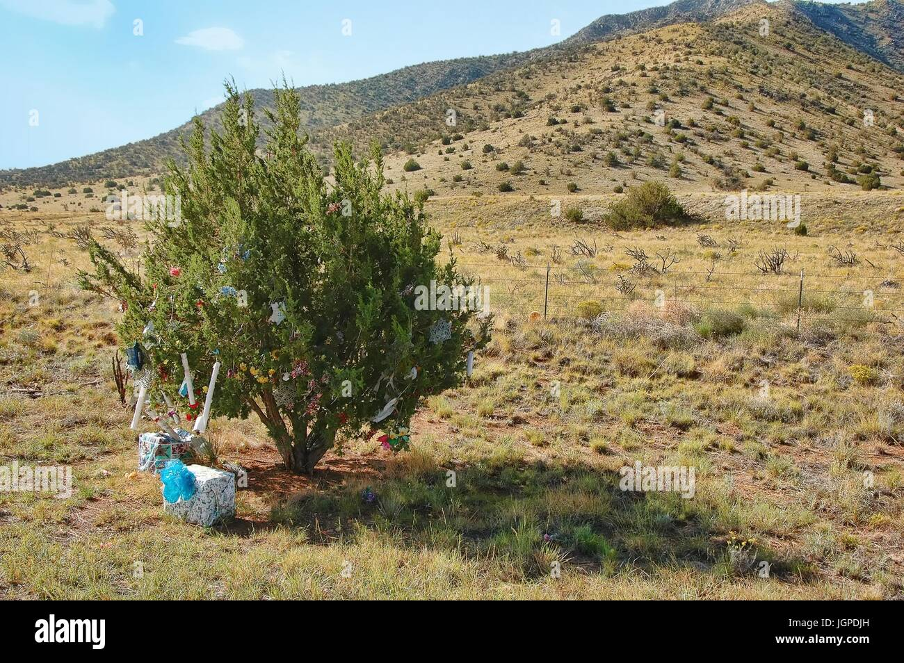 Christmas Tree In The Desert.Folk Art Christmas Tree Stock Photos Folk Art Christmas