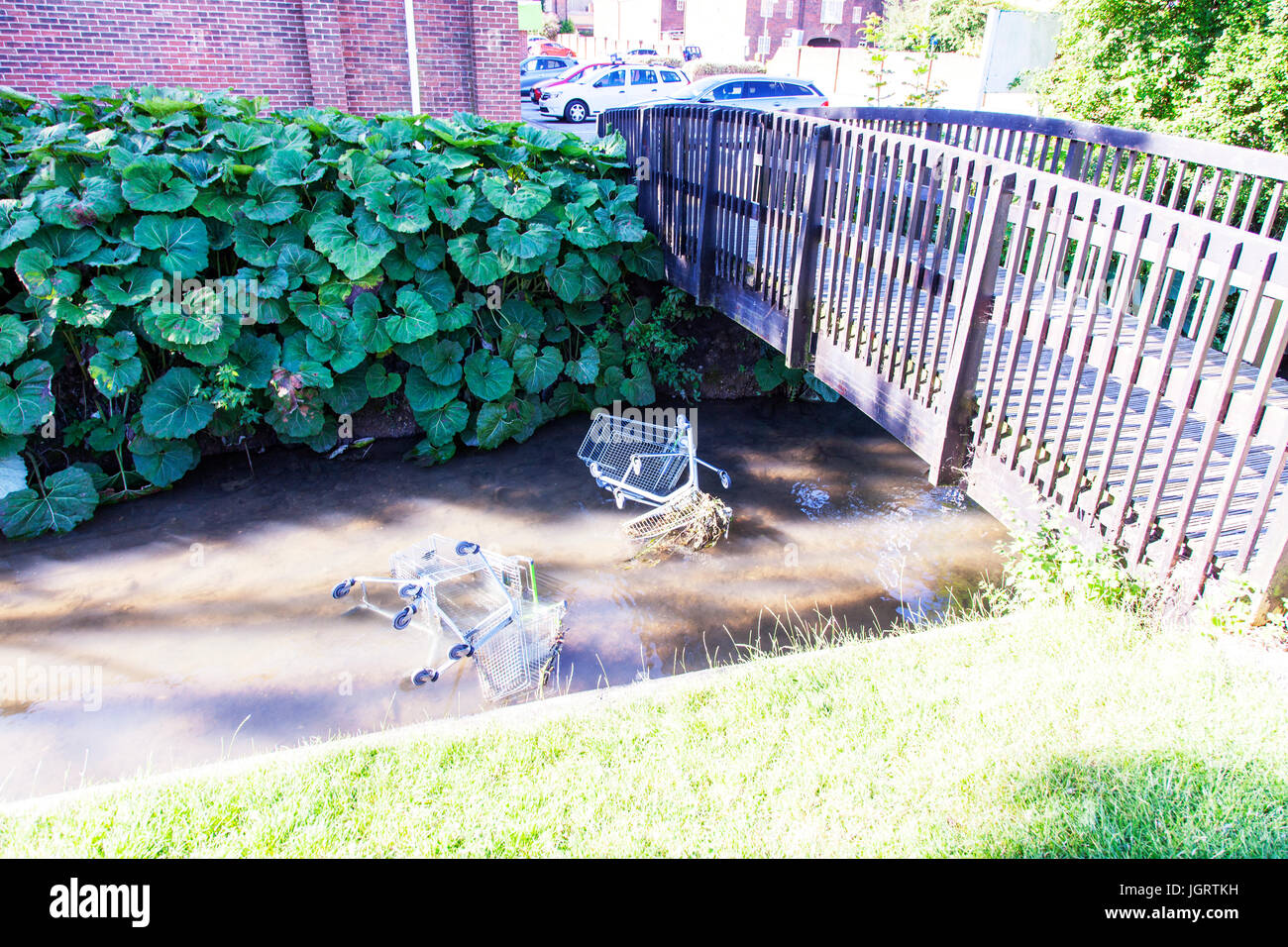 Shopping trolleys in river, shopping trolley in river, thrown in river, shopping trolleys thrown in river, vandalism, - Stock Image