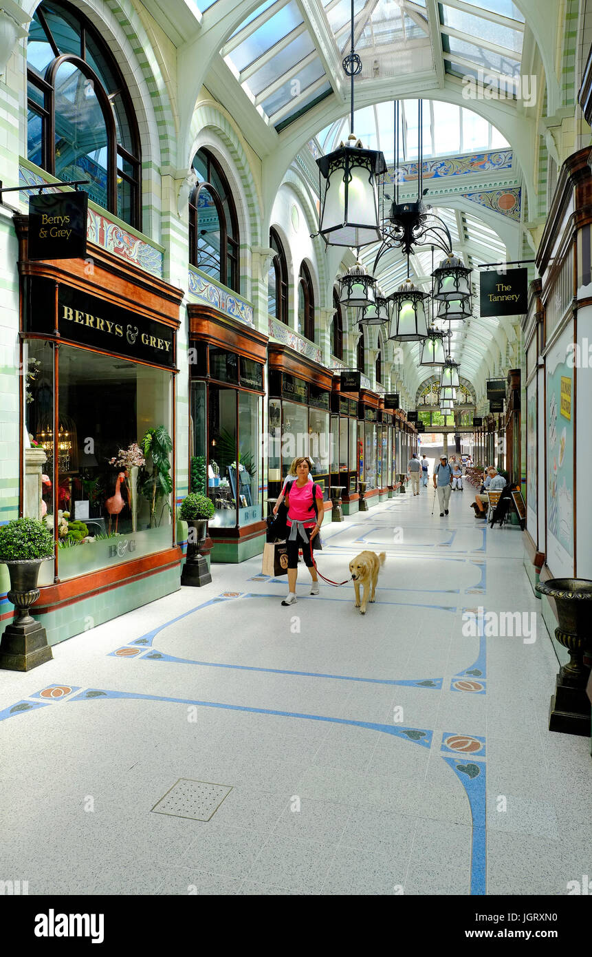 the royal arcade, norwich, norfolk, england - Stock Image