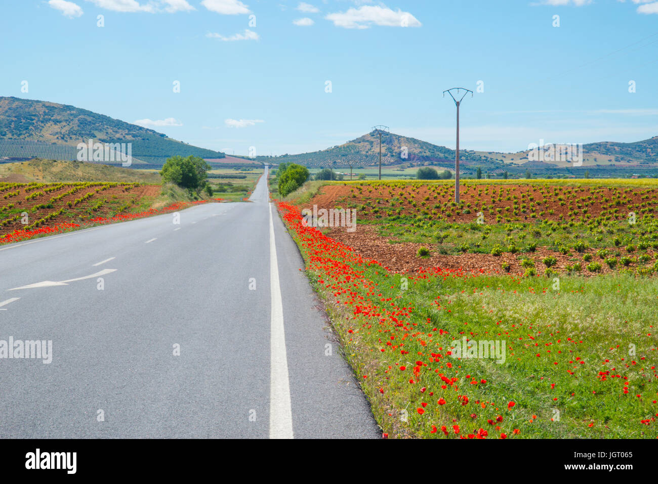 Side road and cultivation field. Fuente el Fresno, Ciudad Real province, Castilla La Mancha, Spain. Stock Photo