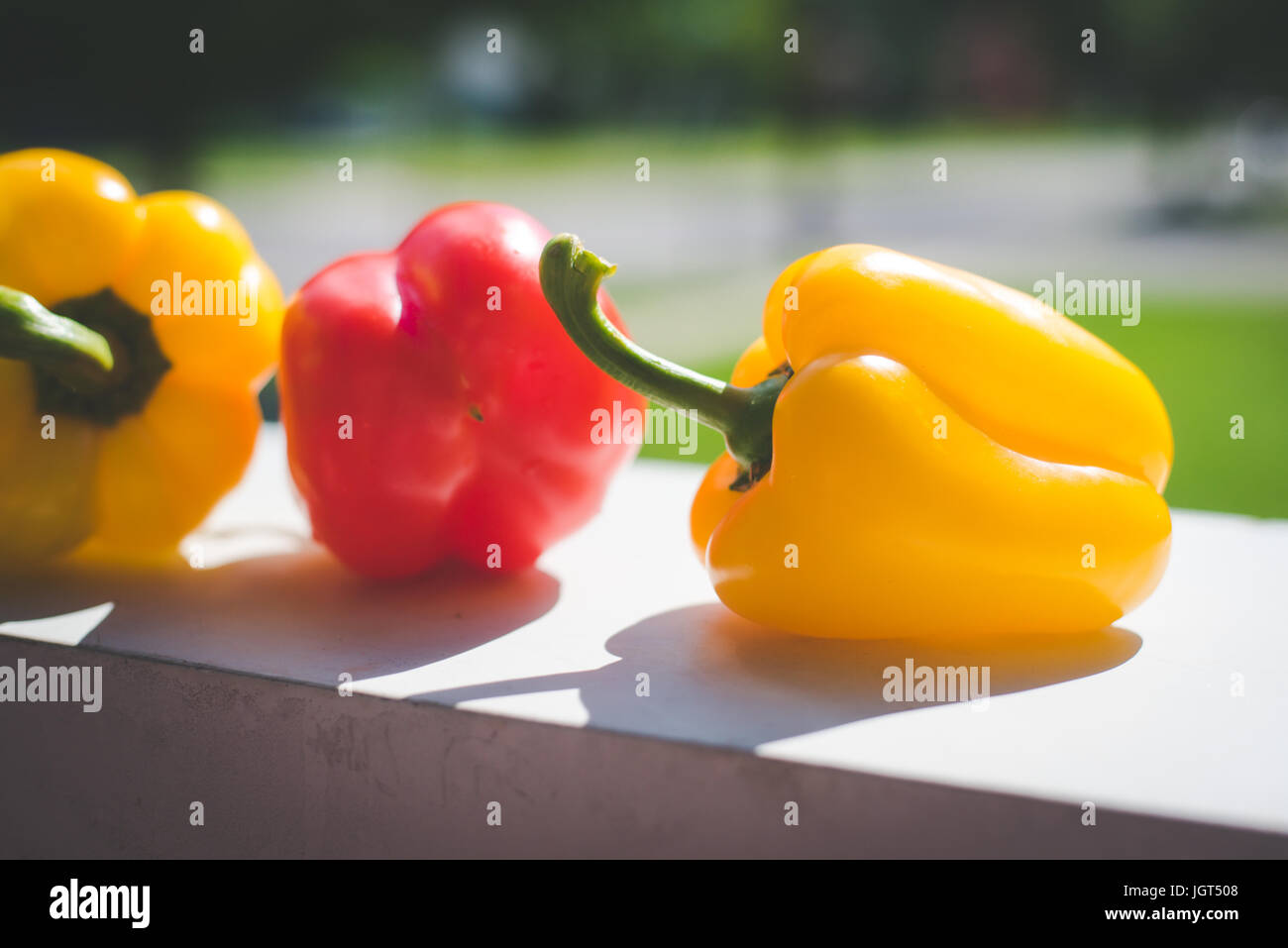 Red and yellow peppers sit on a counter in the sunlight. - Stock Image