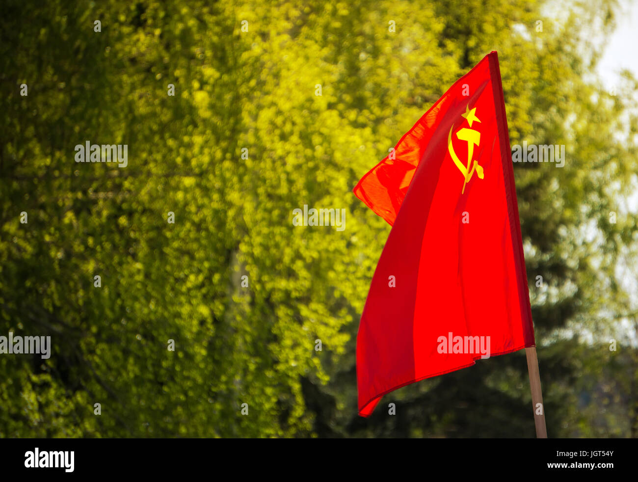 Union of Soviet Socialist Republics USSR HD flag. The flag with the hammer and sickle on a background of green trees. Stock Photo