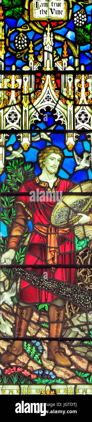 Jesus Christ, The Sower, 'I am the True Vine', stained glass window by J. Powell & Son, 1920, Saxlingham, - Stock Image