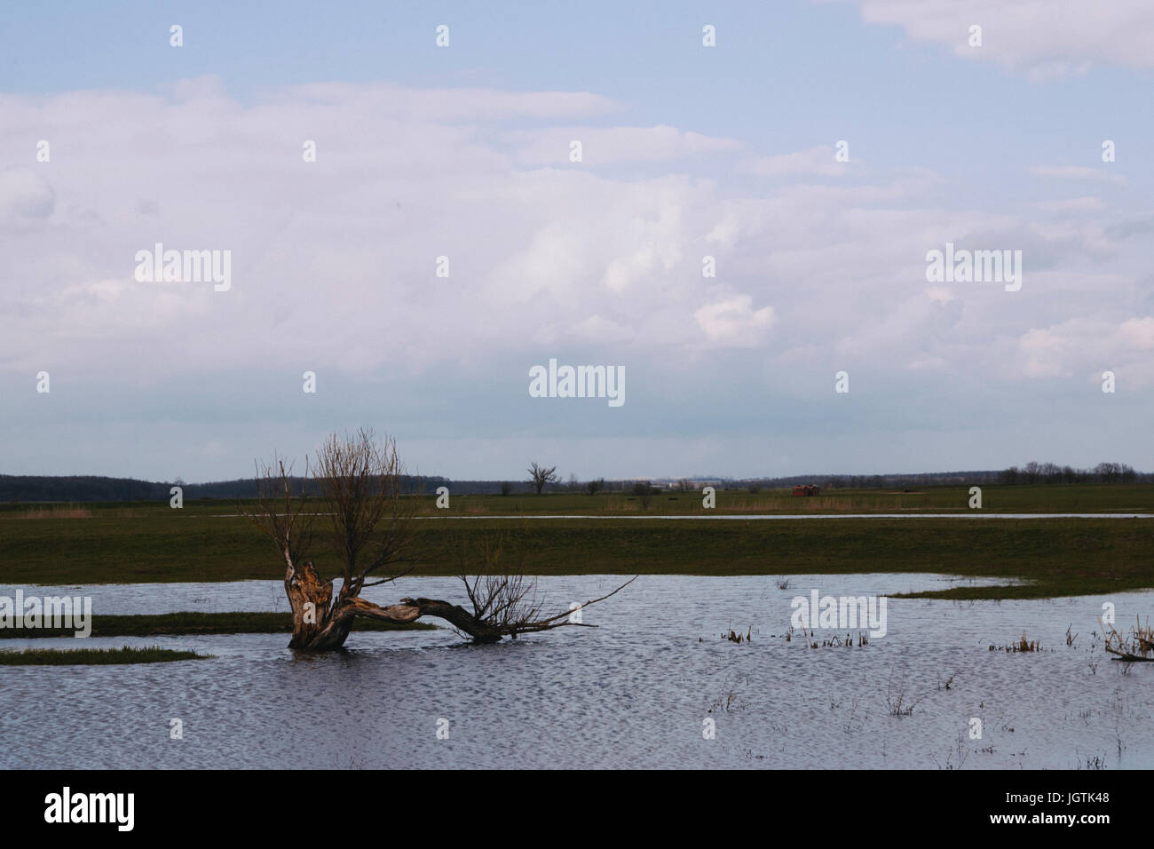 Pasture inland water - Stock Image