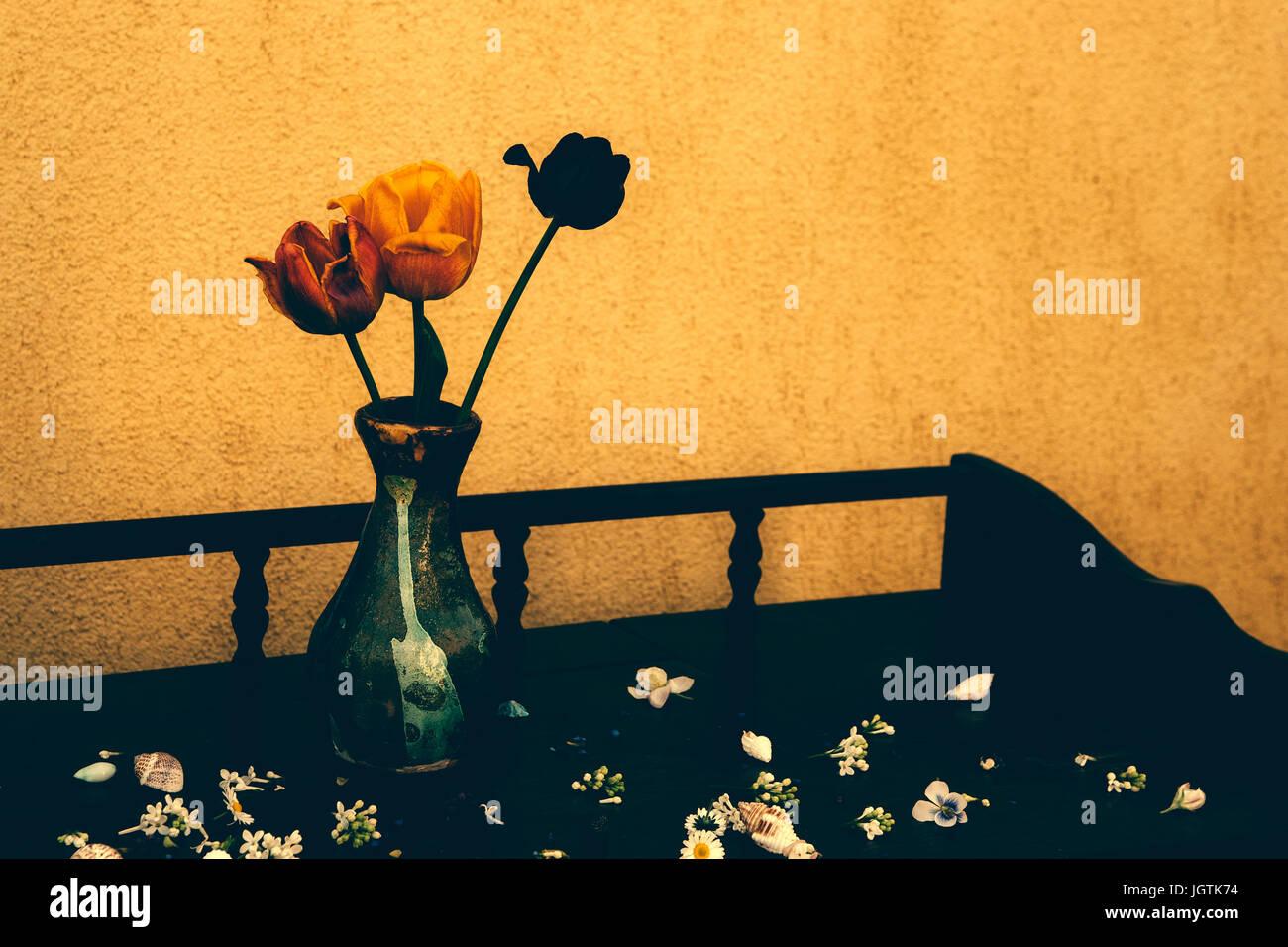 Tulip flowers in vase - Stock Image