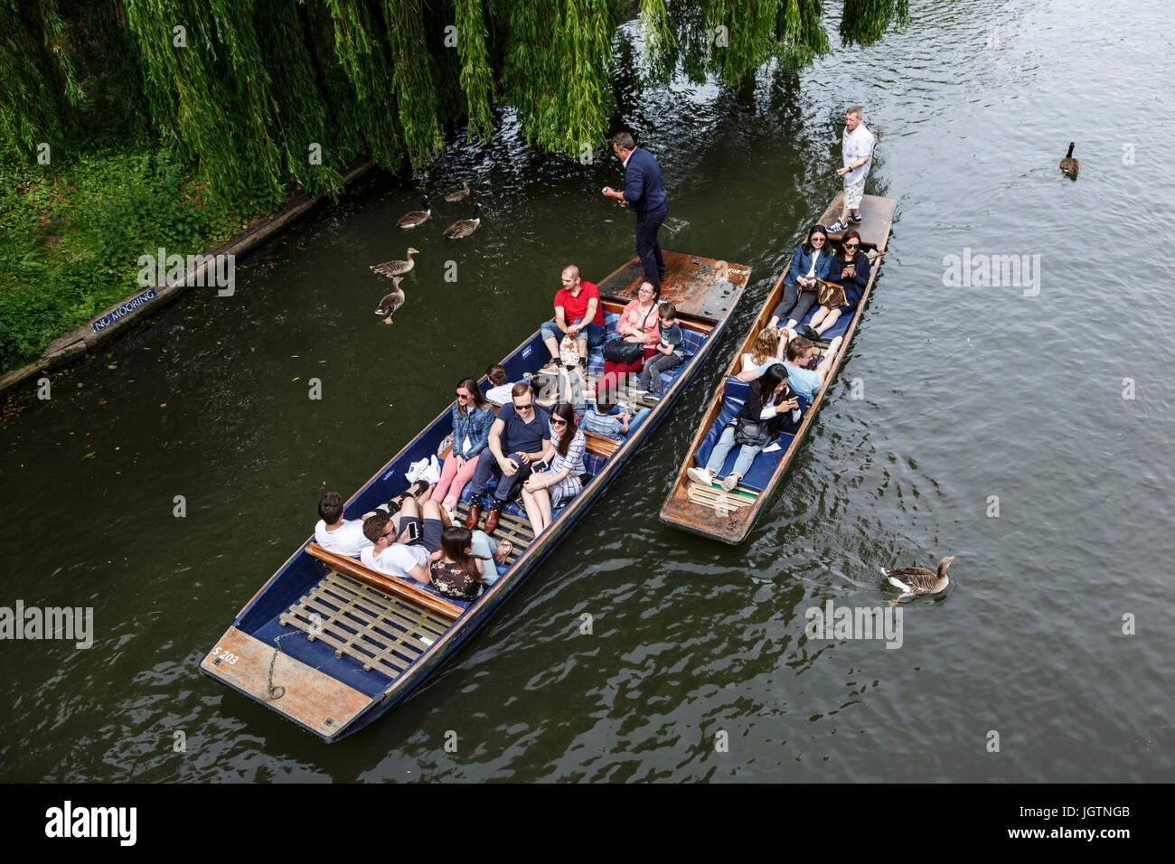 People punting on the River Cam, Cambridge, Cambridgeshire, England, United Kingdom Stock Photo