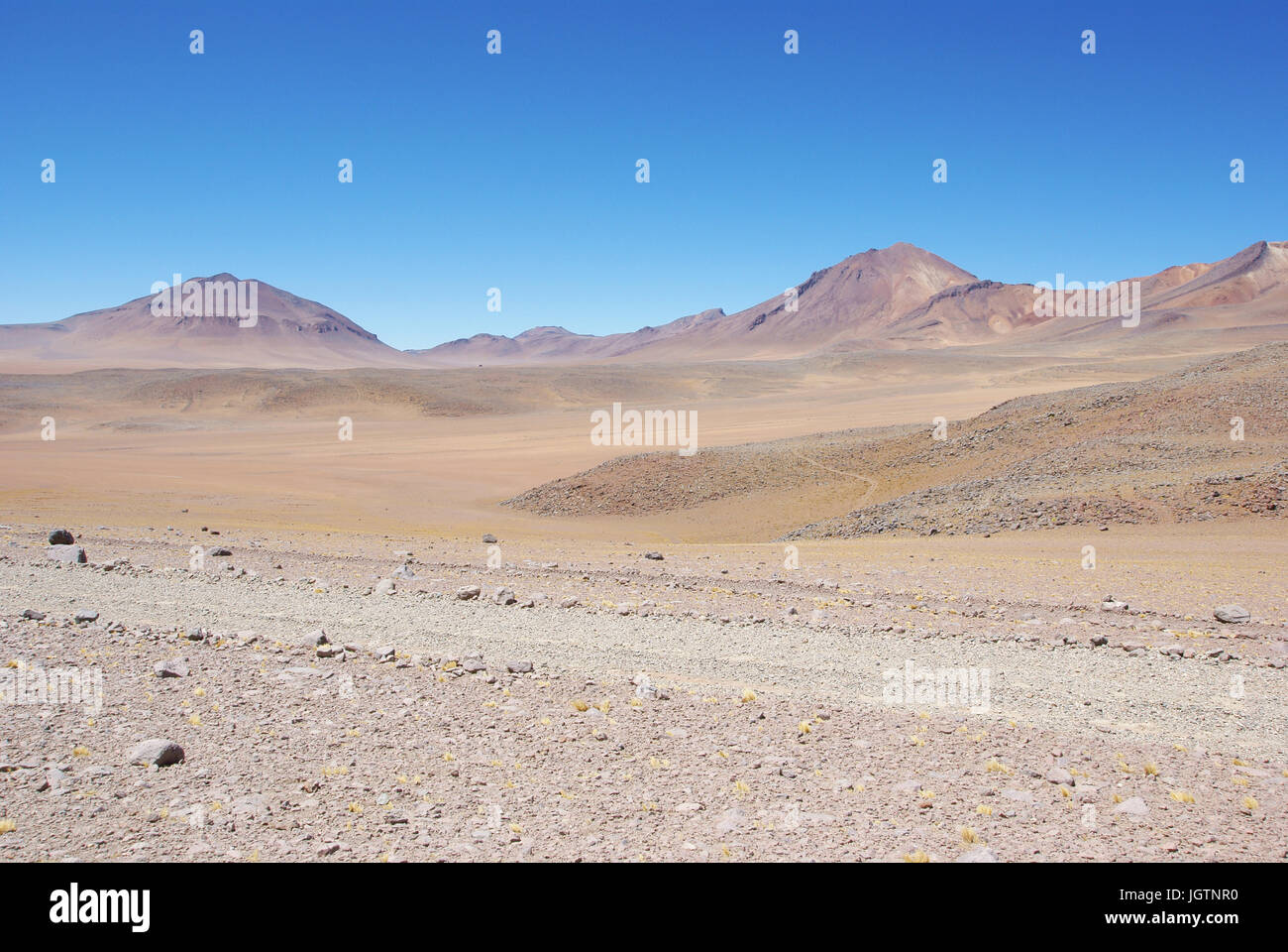 Desert of Of there, Reserves national of Andean fauna Eduardo Abaroa, Desert of Lipez, Department of Potosi, Sud - Stock Image