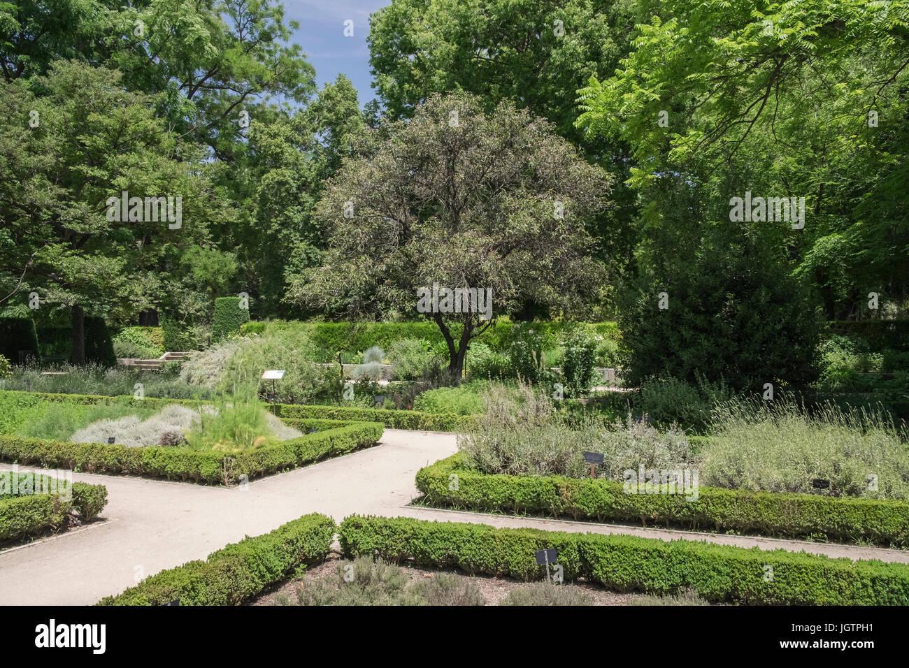 Amazing Royal Botanical Garden, (Real Jardin Botanico) Madrid, Spain.