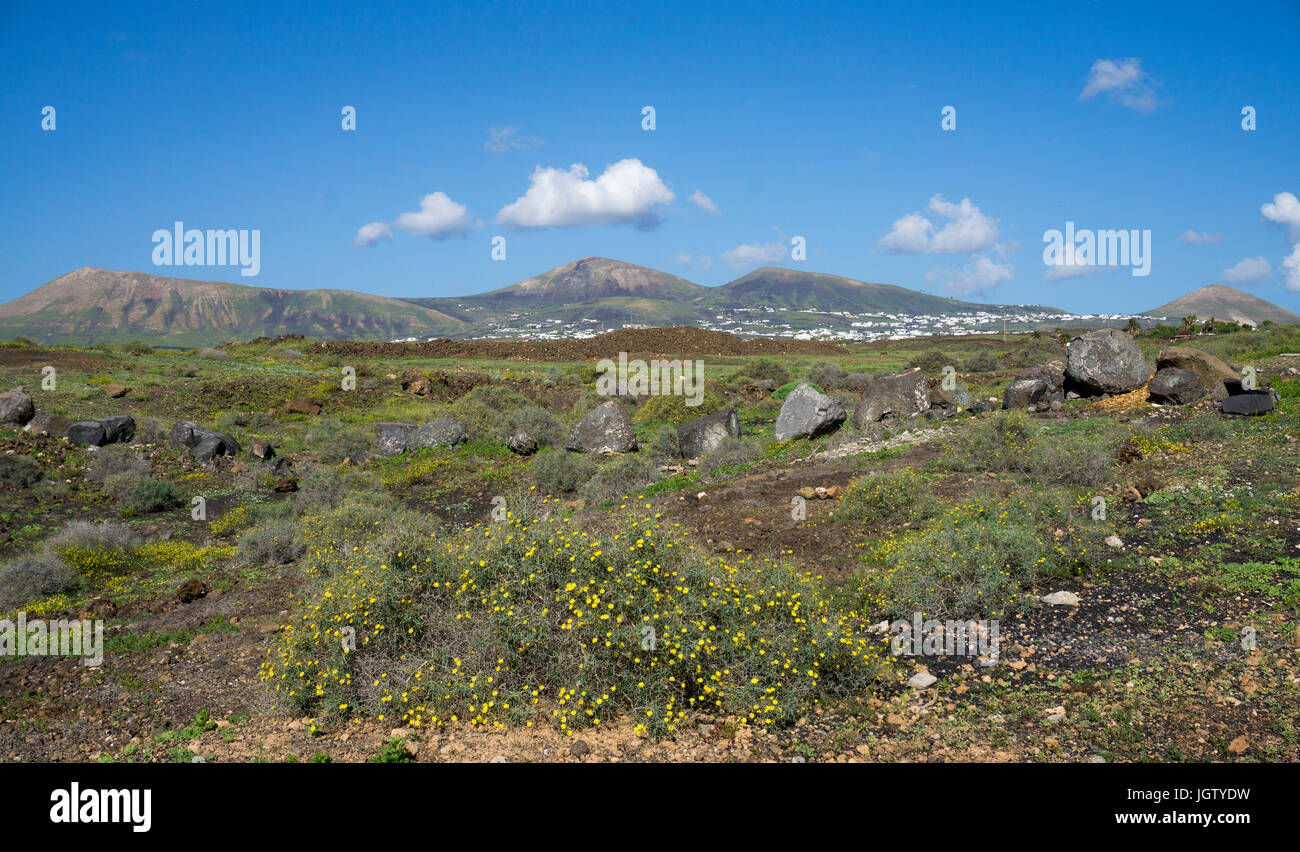 Landscape out of Puerto del Carmen, Lanzarote island, Canary islands, Spain, Europe Stock Photo