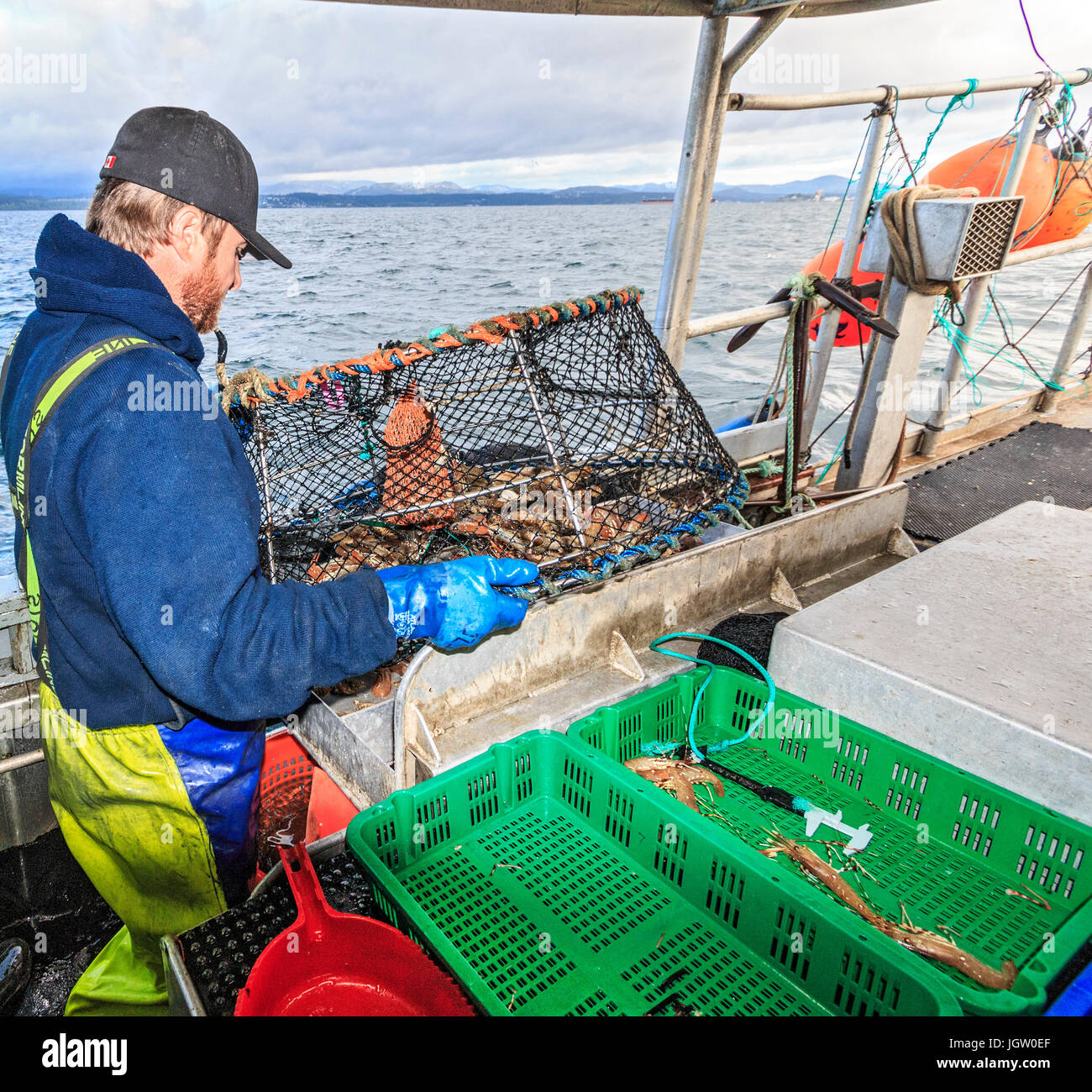 Commercial fishing boat Nordic Rand off Vancouver Island, BC, Canada, fishing for prawns (like shrimp but larger). - Stock Image