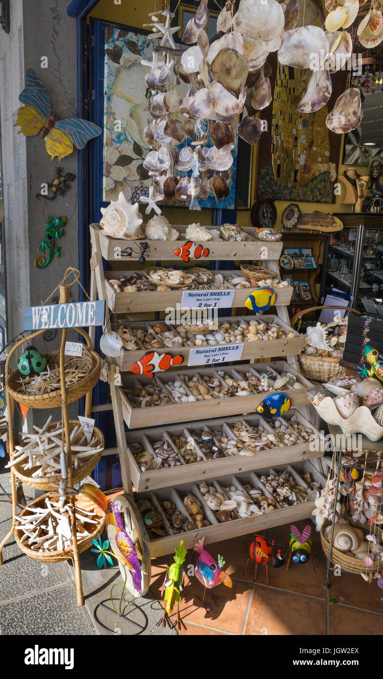 Shop at yachting harbour sells dead sea animals and shells as souvenirs, Puerto Calero, Lanzarote island, Canary - Stock Image