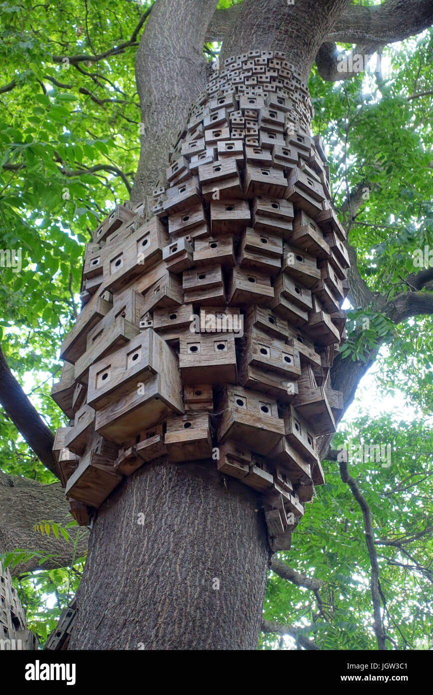 'Tree of Heaven' bird boxes installation by Spontaneous City in Islington, London - Stock Image