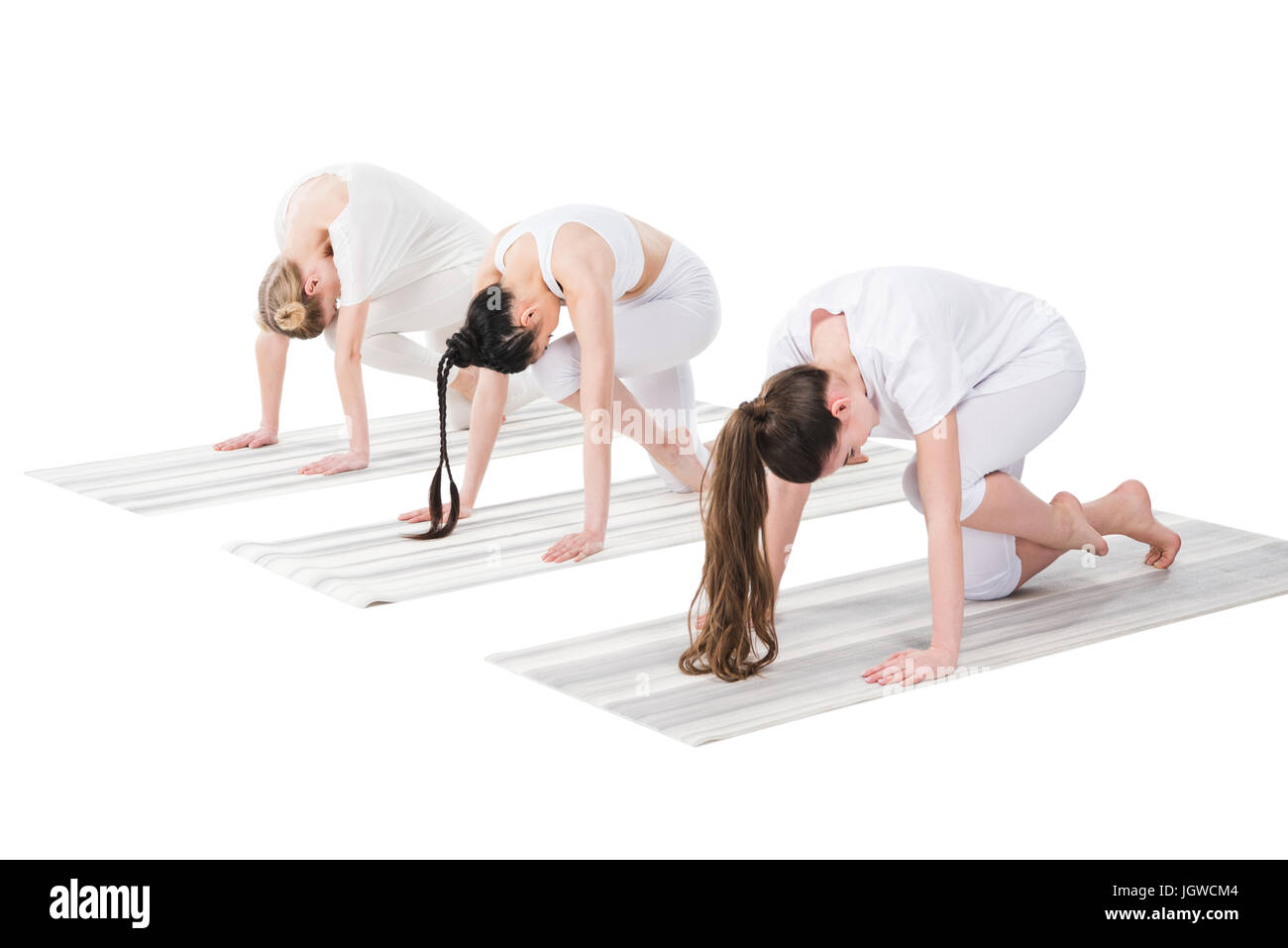 women performing Knee to Forehead asana or Eka Pada Marjariasana on yoga mats isolated on white - Stock Image